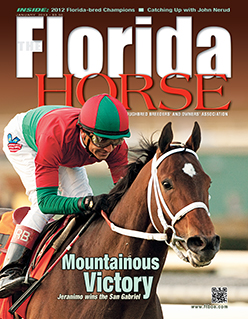 The Florida Horse Publication Cover