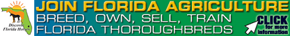 Breed, Own, Sell or Train Florida Thoroughbreds